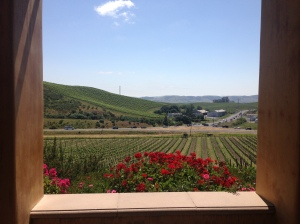 View from Nicholson Ranch winery