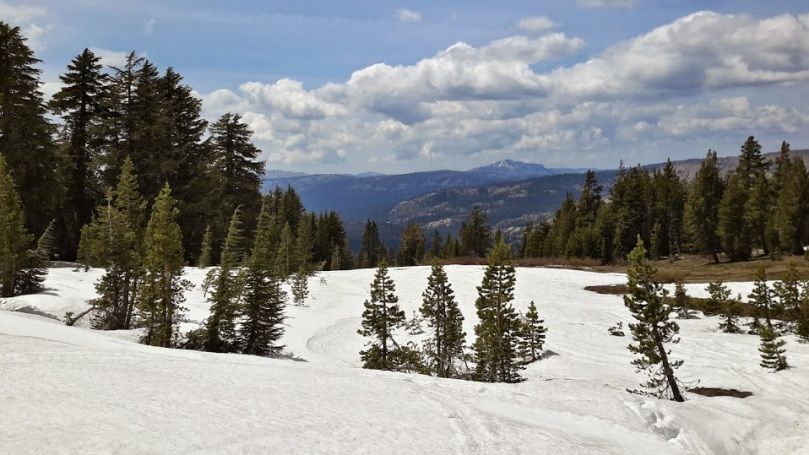 snow field 1