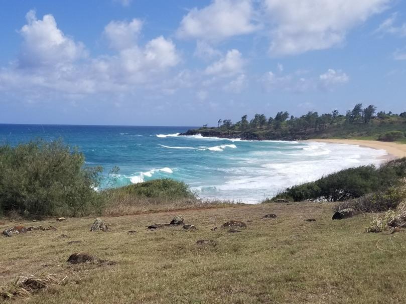 20170824-kauai-034