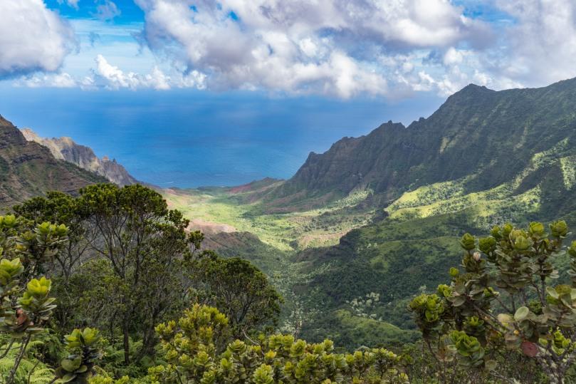 20170825-kauai-032